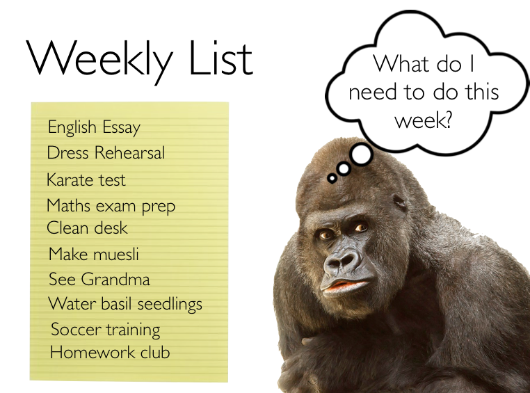 Weekly list of study tasks
