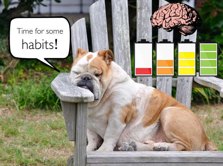 Habits brainpower